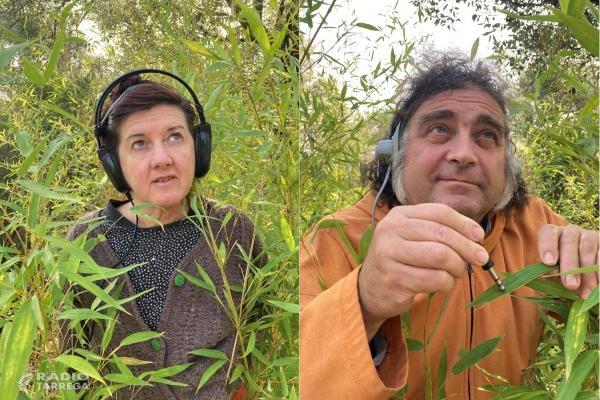 La companyia 'Els Escarlata' busca riures per maquetar el seu nou projecte en l'espai públic