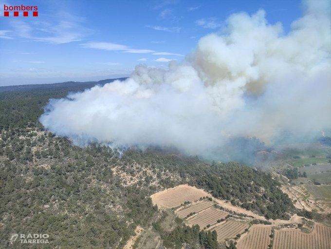 L'incendi forestal de Senan mobilitza una trentena de dotacions de Bombers i afecta més de 20 hectàrees