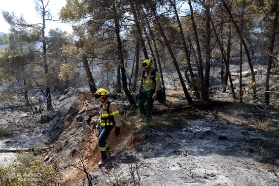 Els Bombers esperen controlar aquest dilluns l'incendi de Senan, que afecta més de 40 hectàrees