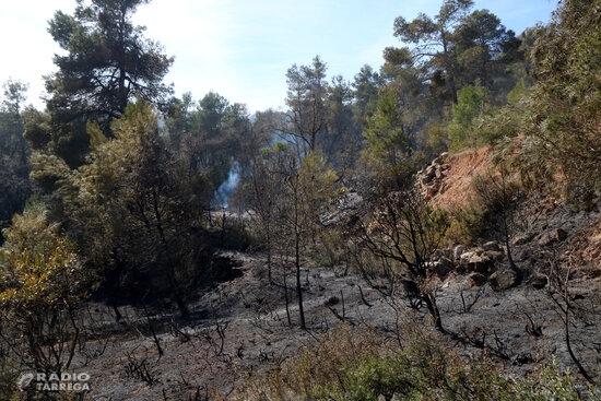 Els Mossos d'Esquadra denuncien un home per un delicte d'incendi per imprudència greu