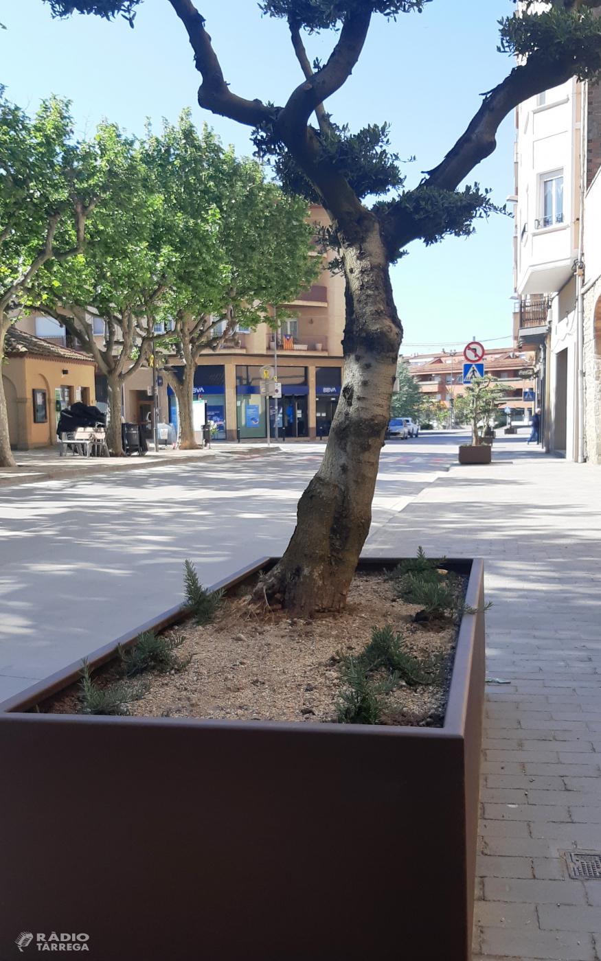 L'Ajuntament d'Agramunt renova el mobiliari urbà de diferents espais de la vila