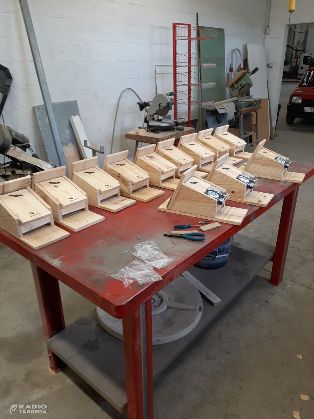 L'Ajuntament de Bellpuig instal·la caixes niu per ratpenats