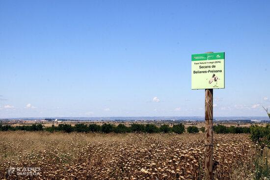El Segarra-Garrigues aposta per consolidar la viabilitat del canal amb el regadiu i el manteniment de la biodiversitat