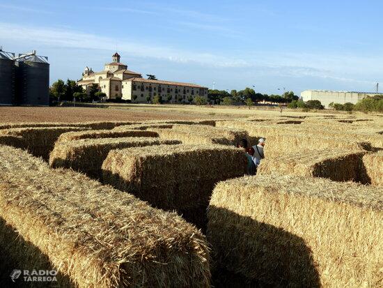 Joves de Sant Ramon organitzen un laberint de palla a l'agost per dinamitzar el municipi i atraure visitants