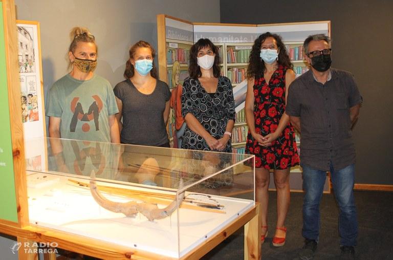 El Museu d'Arqueologia de Catalunya porta a Tàrrega l'exposició que repassa els 30 anys d'excavacions al poblat neolític de la Draga