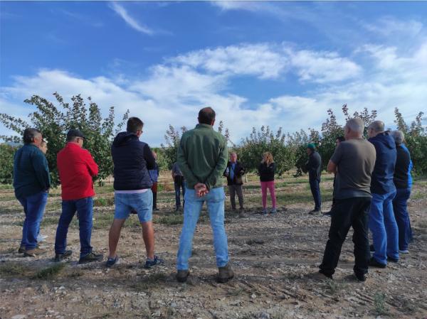Borges organitza les jornades informatives sobre la recol·lecció del pistatxo pels futurs productors del Projecte Pistatxo BAIN