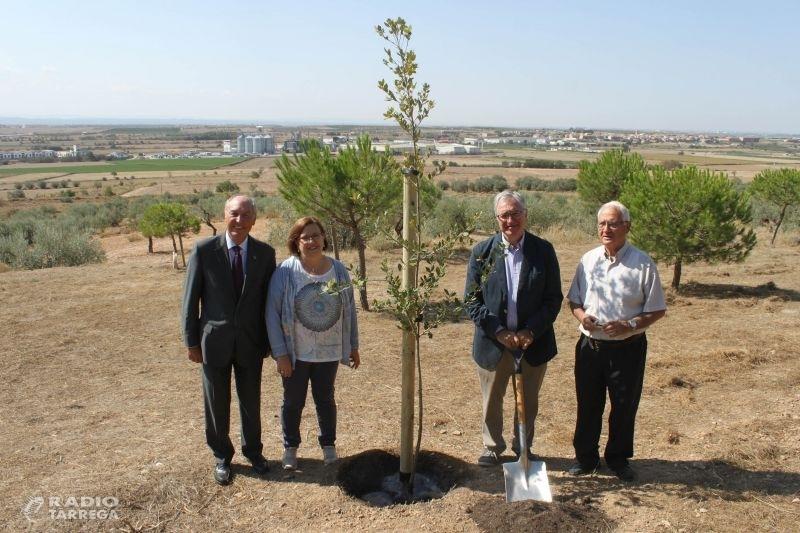 El Parc de Sant Eloi de Tàrrega tindrà una plaça dedicada a l'escolapi Gonçal Crespo, construcció que ajudarà a finançar l'empresa Borges