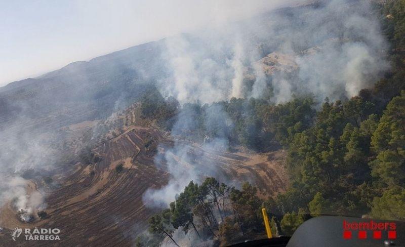 Foc forestal entre els Omells de Na Gaia i Vallbona de les Monges a l'Urgell
