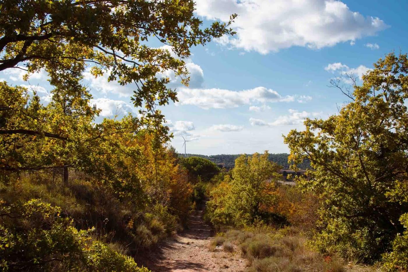 Zona trail a l'Urgell- La Serra del Tallat- Rocallaura