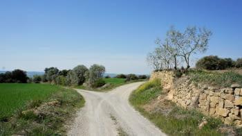 L'Urgell compta amb 3 rutes de trail running