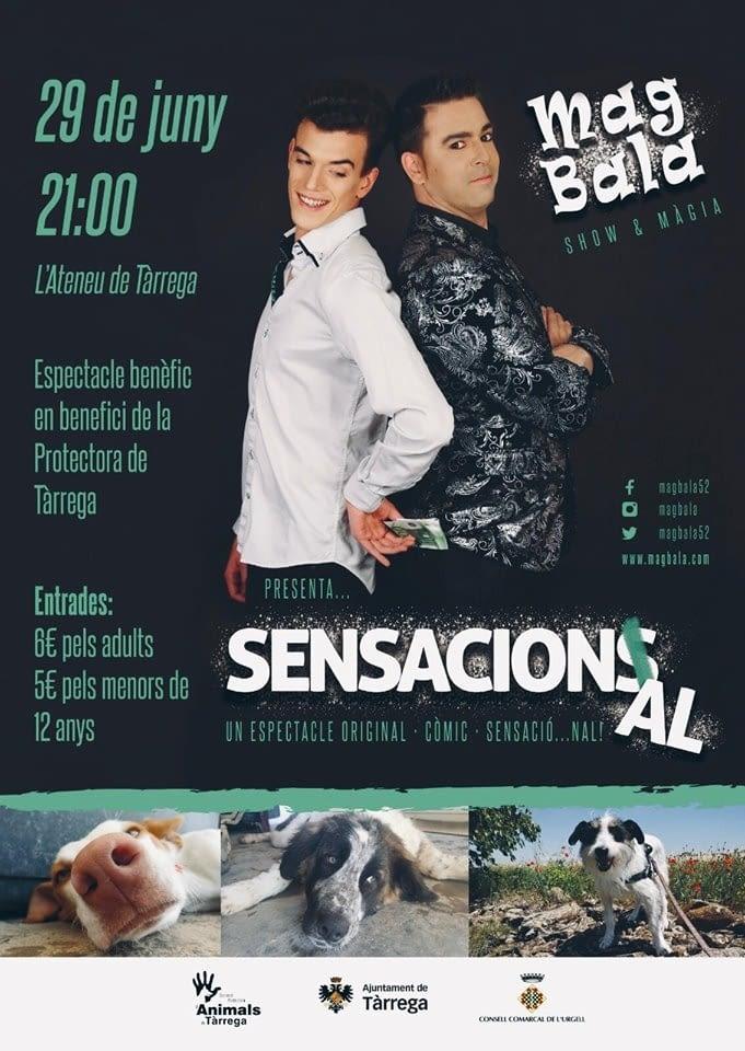 ESPECTACLE BENÈFIC PER LA PROTECTORA D'ANIMALS DE TÀRREGA