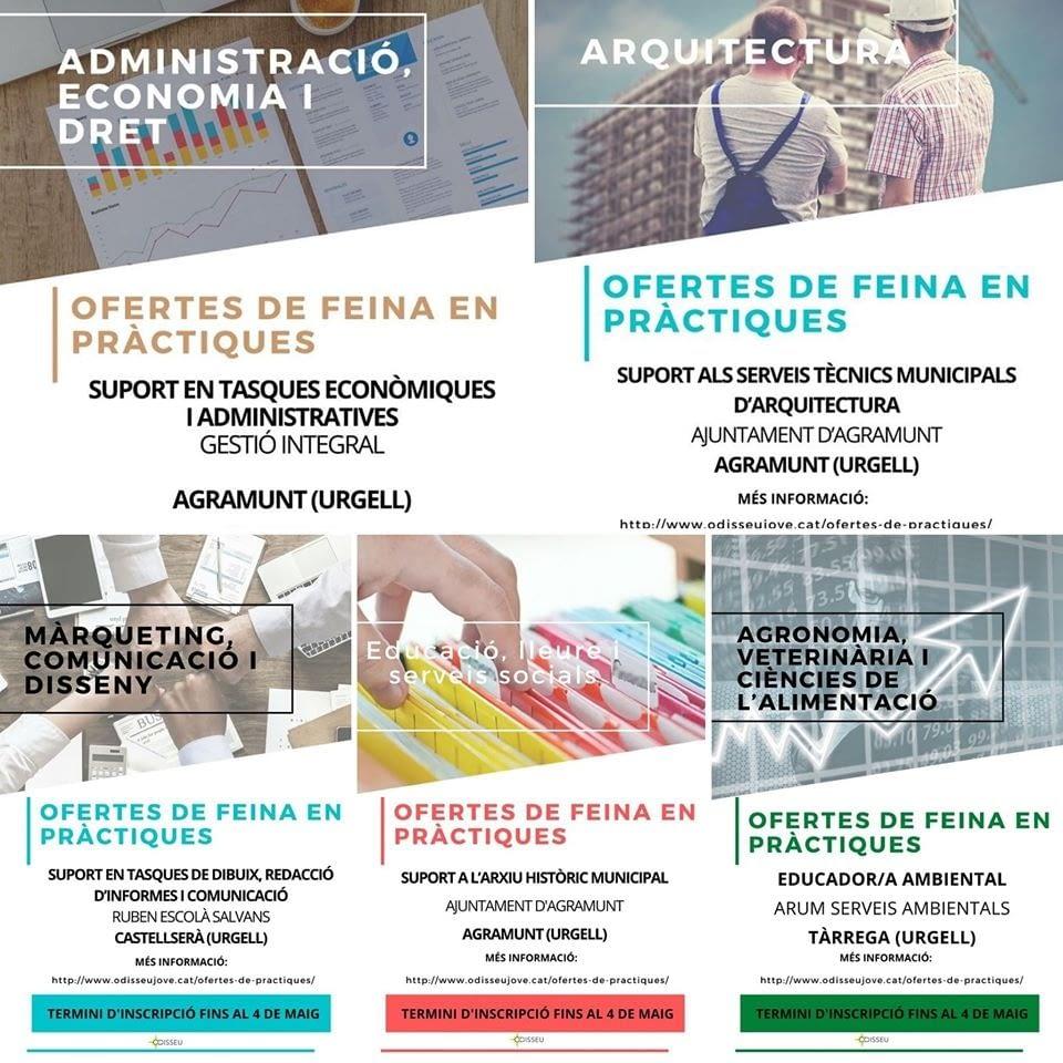 Nova convocatòria d'ofertes de Practicum del Projecte Odisseu adreçades a estudiants universitaris de grau i màster