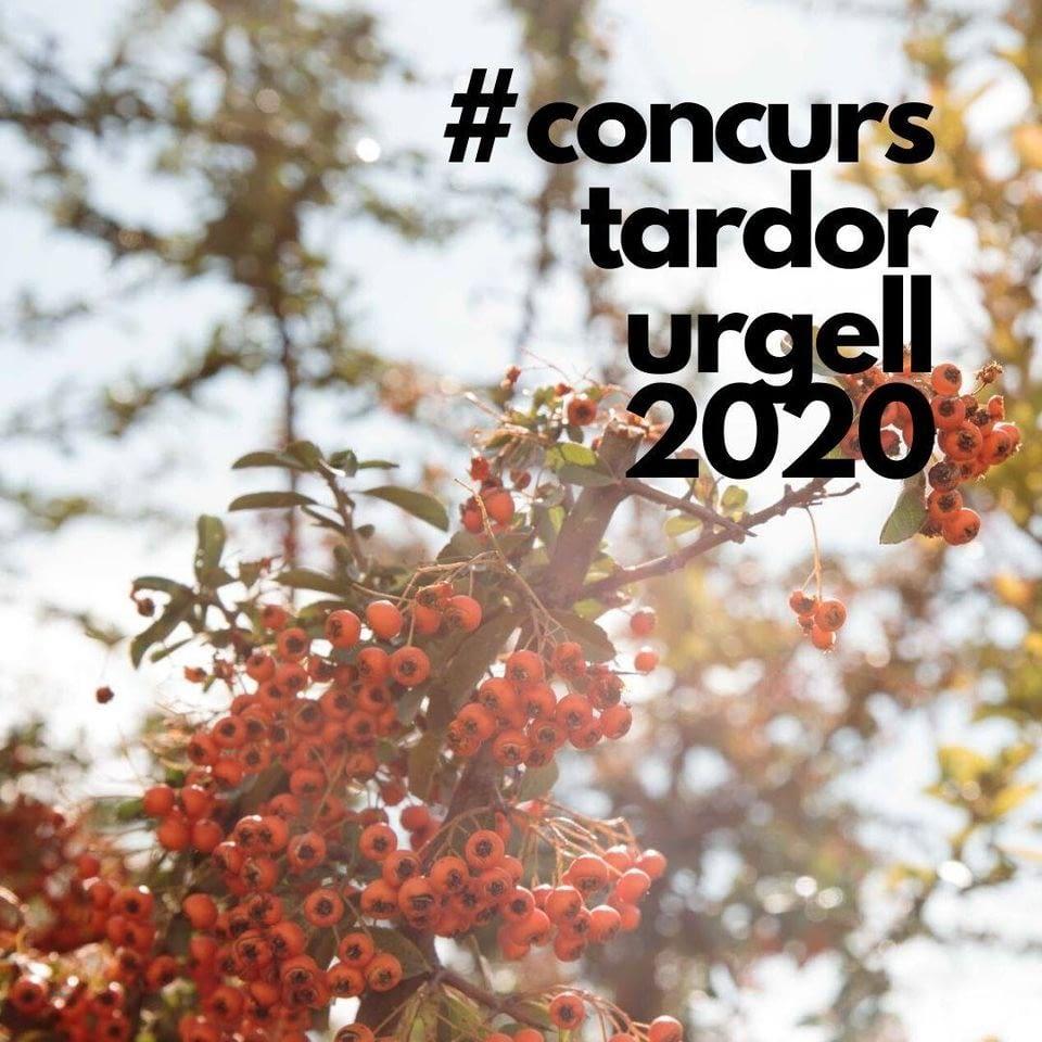 Participa al concurs: La tardor a l'Urgell, escenaris que inspiren