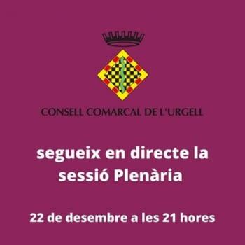 Sessió extraordinària del Ple del Consell Comarcal de l'Urgell
