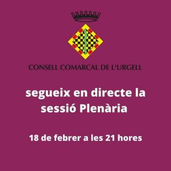 Seguiu la sessió ordinària del Ple del Consell Comarcal de l'Urgell.