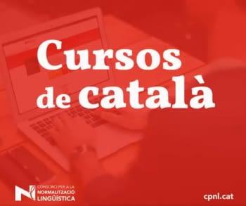 Vols fer un curs de català?