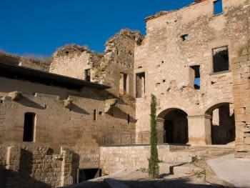 Els serveis a les persones, la mobilitat i la cultura, temes destacats del Ple del Consell Comarcal de l'Urgell