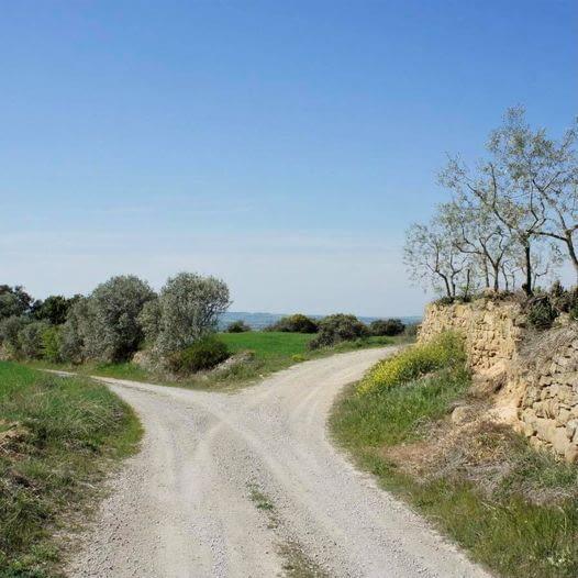 Us presentem dues noves rutes de Trail Running a l'Urgell