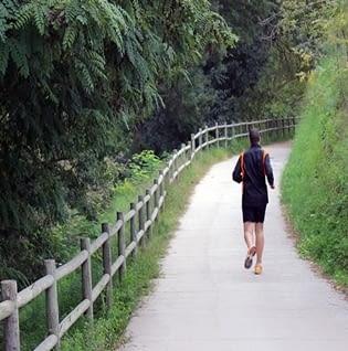 Zones verdes i llocs per passejar