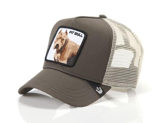 GOORIN BROS gorra perro Pitbull