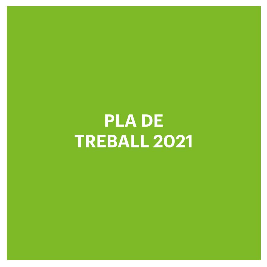 pla de treball 2021