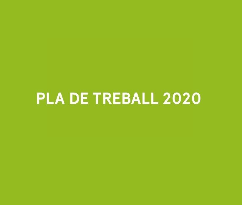 pla de treball 2020