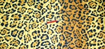 Multiusos leopardo 180 x 260 - 2