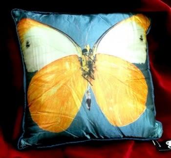 Cojín mariposas