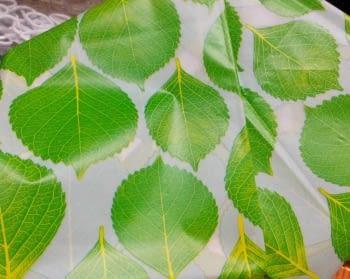 Cortina baño hojas - 3