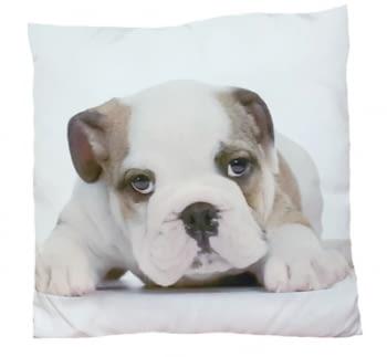 Cojines cachorro Bulldog 45 x 45