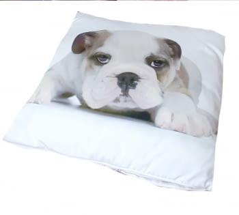 Cojines cachorro Bulldog 45 x 45 - 1
