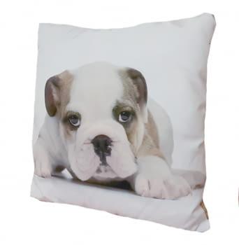 Cojines cachorro Bulldog 45 x 45 - 2