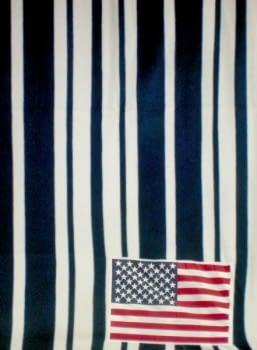 Manta polar y cojín USA