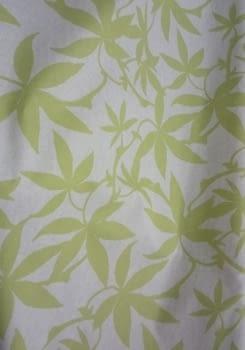 Tela resinada hojas pistacho