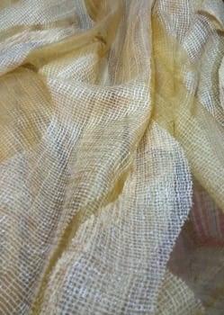 Organza amarilla - 2