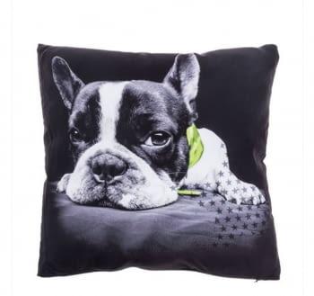 Cojines Bulldog verde - 1