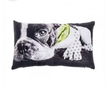 Cojines Bulldog verde - 2