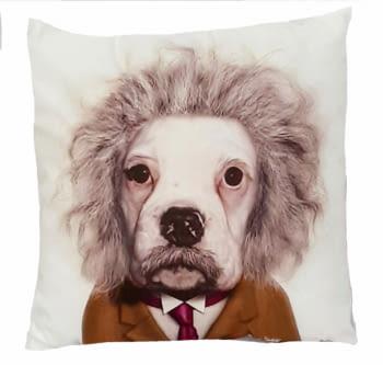 Cojines perro Einstein 45 x 45