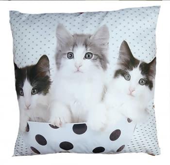 Cojines gatos lunares 45 x 45 - 1