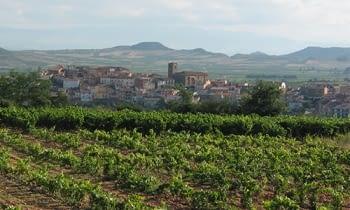 Vinos d.o. Rioja