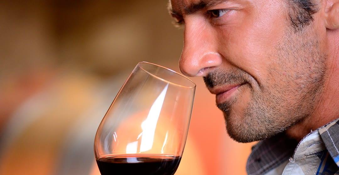 ¿En qué consiste una cata de vino?