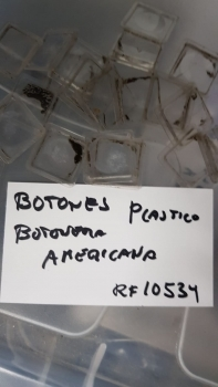 BOTONES PLASTICO BOTONERA VENDO AMERICANA