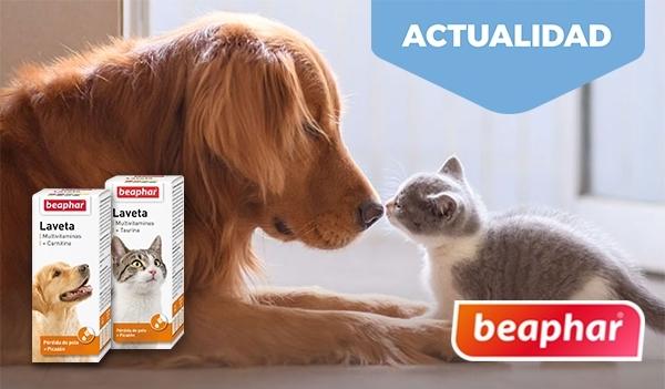 Laveta Multivitaminas para perros y gatos de Beaphar.