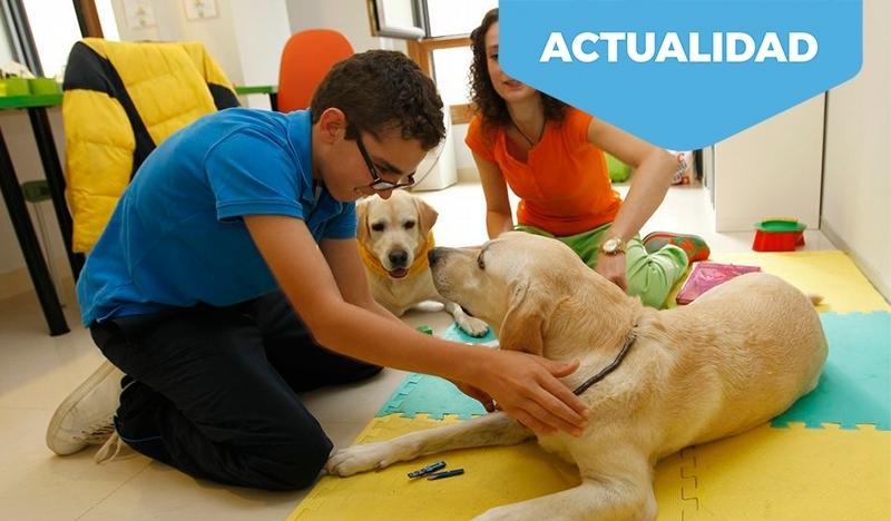 Beneficios de la terapia con animales para personas con discapacidad