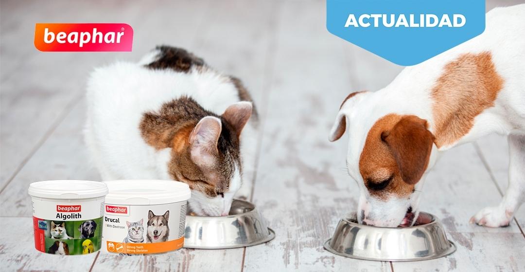 Beaphar Algolith y Drucal. El alimento complementario ideal para las mascotas.
