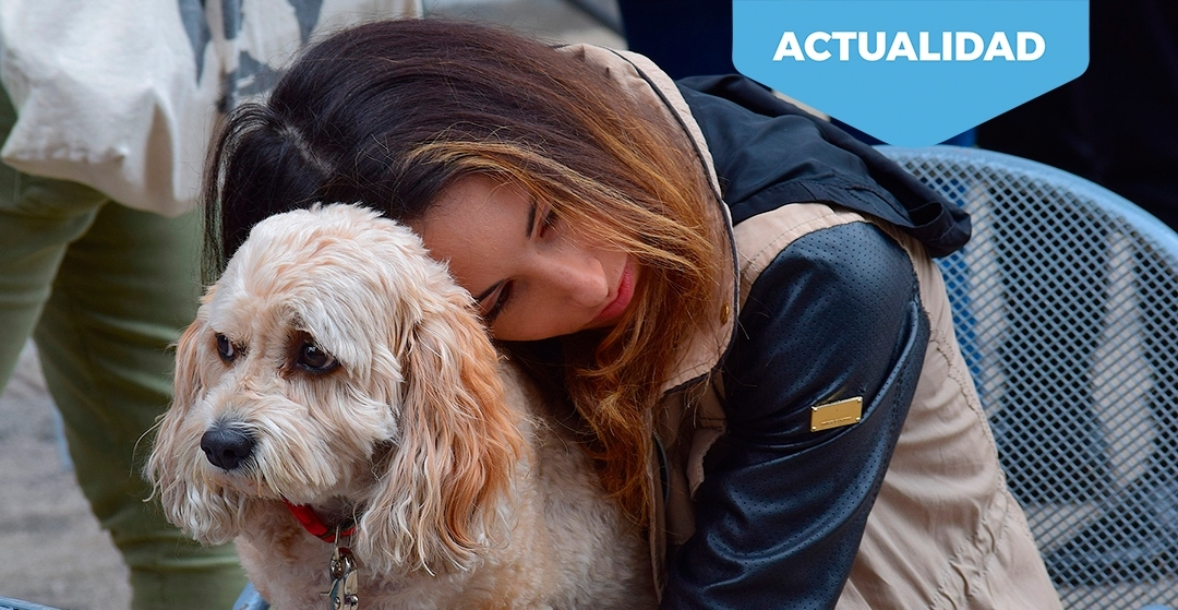 Bienestar animal y atracción del consumidor.