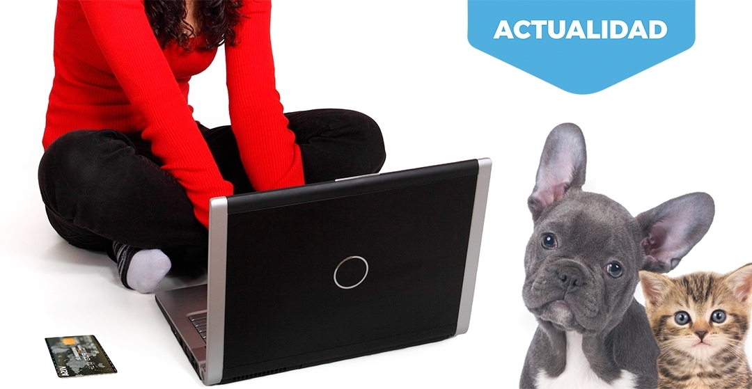 ¿Es legal comprar o vender mascotas por internet?