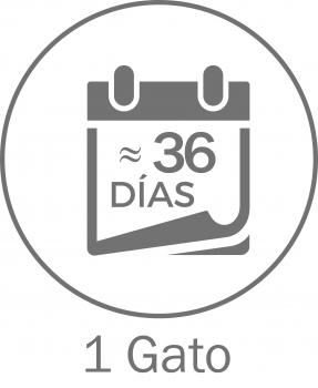 ¡OFERTA! CAT'S BEST ORIGINAL - 12
