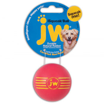 JW ISQUEAK BALL - 1