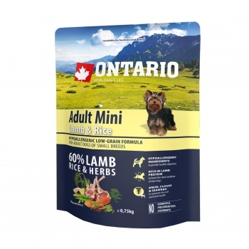 ONTARIO ADULT MINI LAMB & RICE - 1